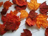 Осіннє листя з атласу